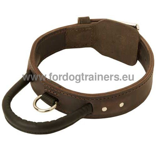 Strong Leather Collar for Service Dog