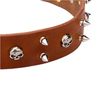 Leather Dog Collar with Skulls and Spikes