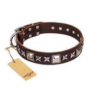 "Quality Dog Collar ""Perfect Impression"" FDT Artisan Brown"