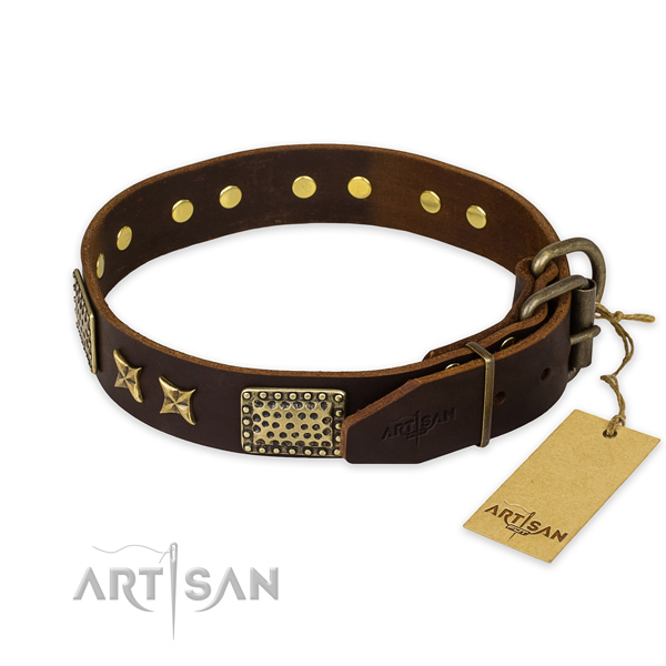 Leather Artisan Collar for Dogs