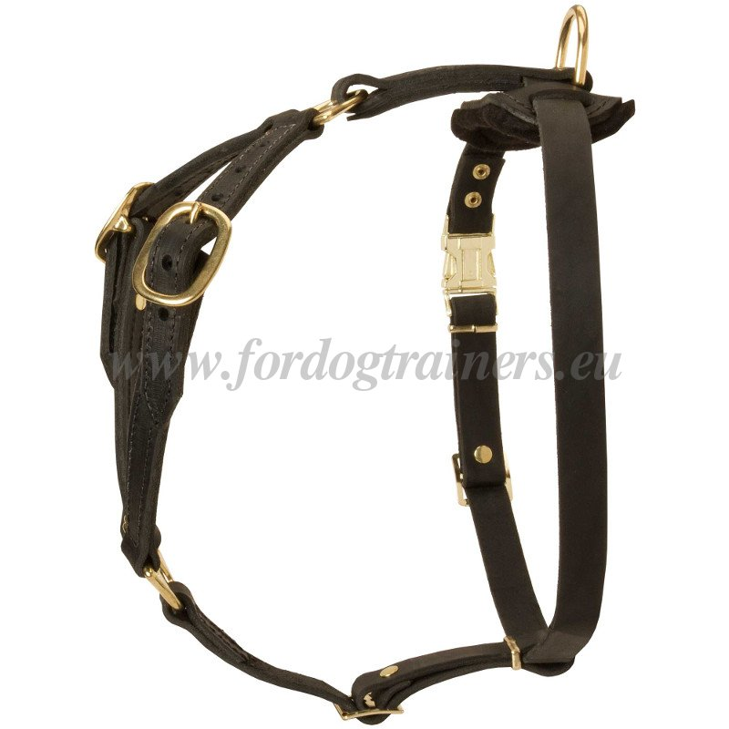 Leather Step-in Harness for Doberman - €59.0