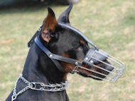 Metal muzzle comfortable for Doberman