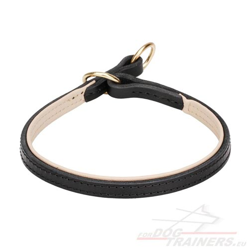 Leather Choke Collar for Dog
