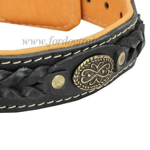 Braided Padded Dog Collar with Nappa