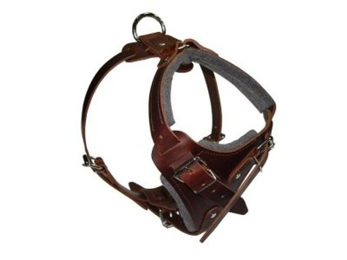 Multifunctional Padded Leather Dog Harness Brown