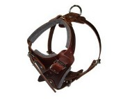Brown Padded Leather Dog Harness
