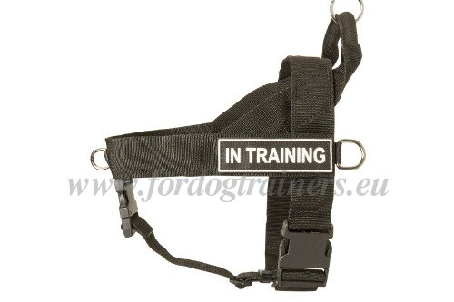 Dog Harness Reviews Original