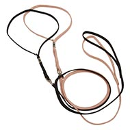 Nylon Set of Lead and Collar for Dog Show Participation