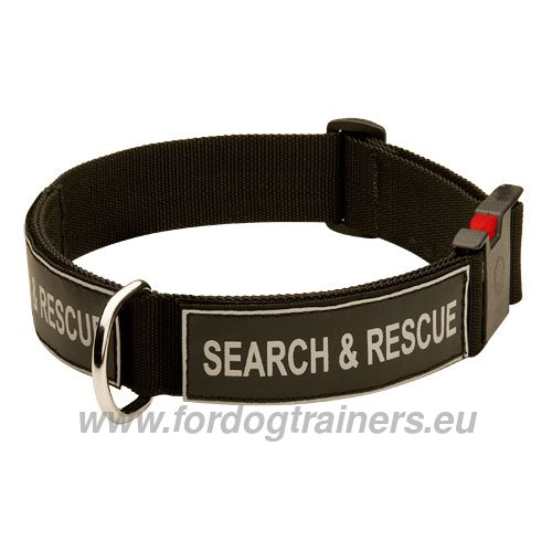 Nylon Dog Collar for Service and Military Dog