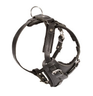 Agitation Attack Leather Dog Harness 2018 ▼