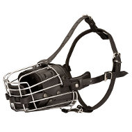 Wire basket muzzle with padding