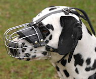 Wire Basket Dog Muzzle for Dalmatian