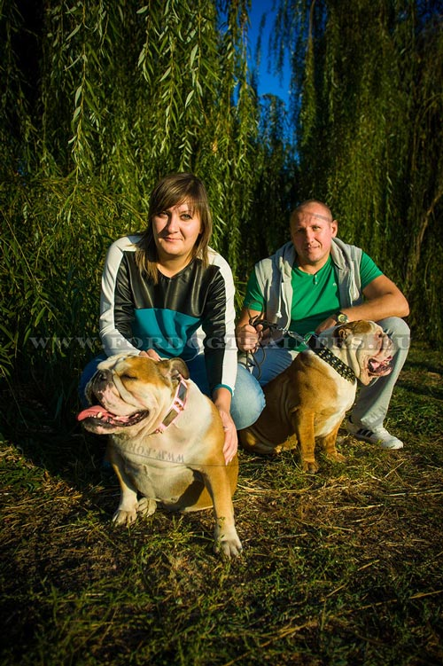 Cute Bulldogs & Their Owners
