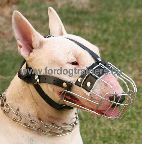 Wire Muzzle for Dog Biting