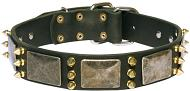 Royal Dog Collar massive plates and spikes for Dogue De Bordeaux