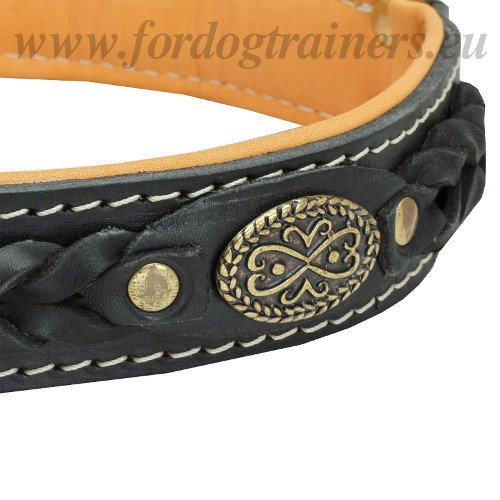 Dog Collar Leather with Braids