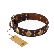 "Brown ""Golden Square"" Dog Collar FDT Artisan◇◦"