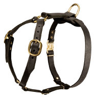Dog Harness for