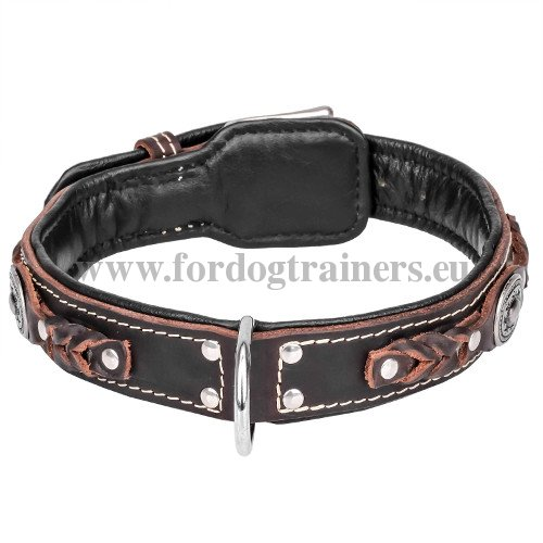 Handmade Dog Collar with Nappa Padding and Chromed