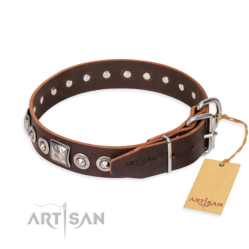 Functional Leather Collar for Dogs