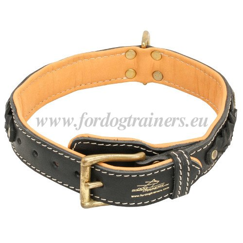 Soft Dog Collar with Padding