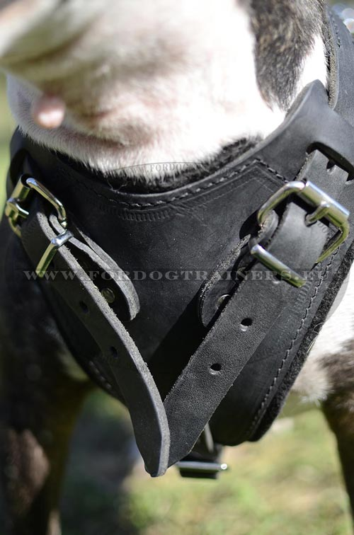 Strong Leather Attack Harness