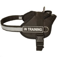 Dog Harness with Patches