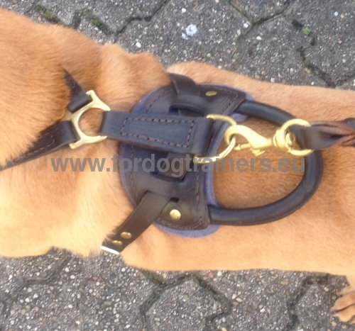 Premium Quality Leather