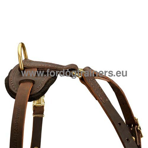 Resistant Leather Dog Harness