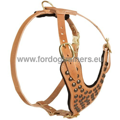 Premium Quality Dog Harness Tan