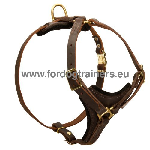 Tracking Dog Harness Brown