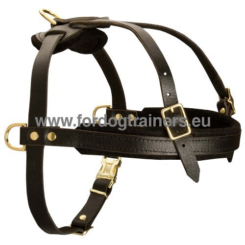 Comfortable leather harness for tracking
