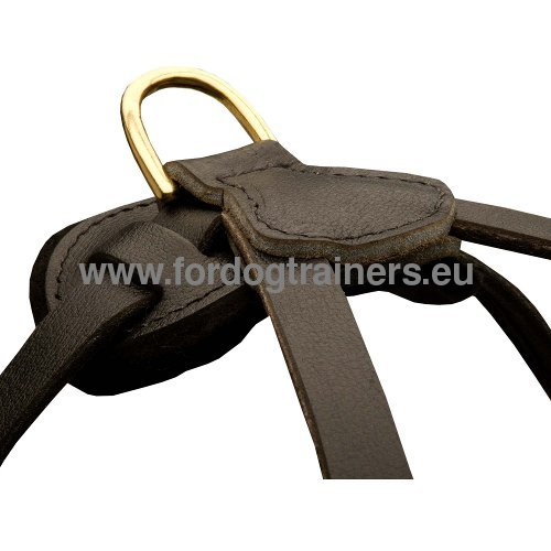 Practical leather dog harness of resistant genuine