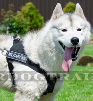 Tracking Harness in Nylon for Husky and Akita &#9873
