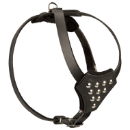 Leather Dog Harness with Studs for Small Dogs ✧