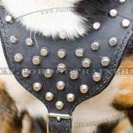 Harness for Stylish Dogs Studded ⓒⓞⓞⓛ
