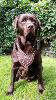 Leather