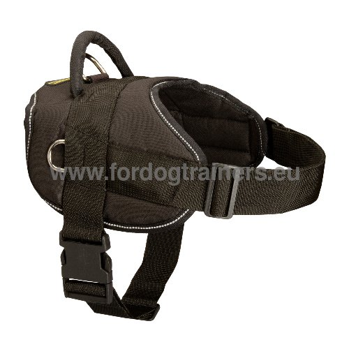 Universal Nylon Dog Harness
