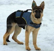 German Shepherd Outdoor Harness for Tracking