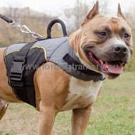 Vest Harness