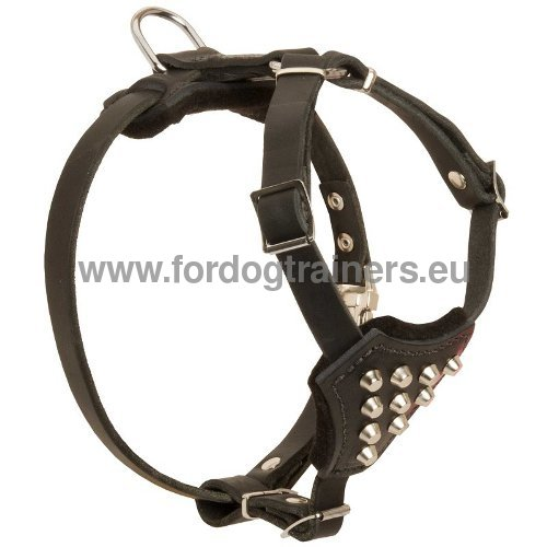 Solid Stylish Harness for Dog
