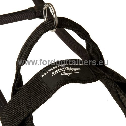 Comfortable Dog Harness Hand Stitched