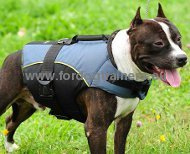 Vest Harness Nylon for Pitbull | Winter Coat Harness ❆