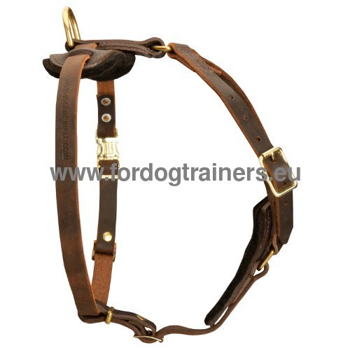 Non-restrictive Tracking Harness