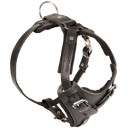 Agitation Attack Leather Dog Harness 2016 ▼