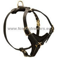 Multifunctional Dog Harness for Tracking ◆