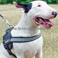 Nylon reflective multi-purpose dog K9 harness for Bull Terrier