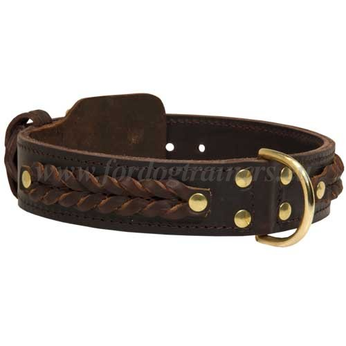 Thick Dog Collar Braided
