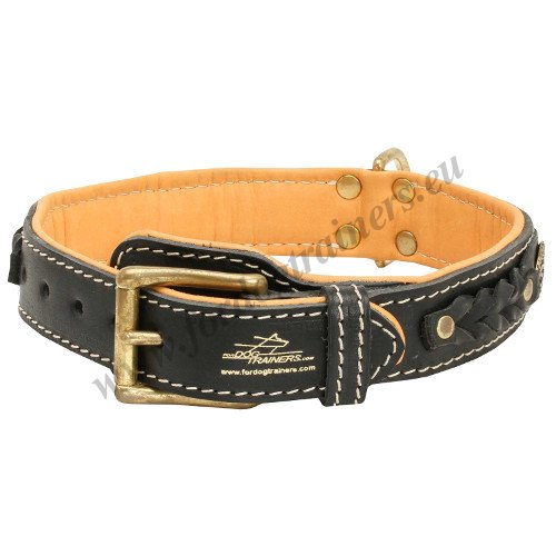 Thick Dog Collar with Braids
