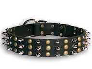 Rottweiler leather dog collar with spikes and studs S59